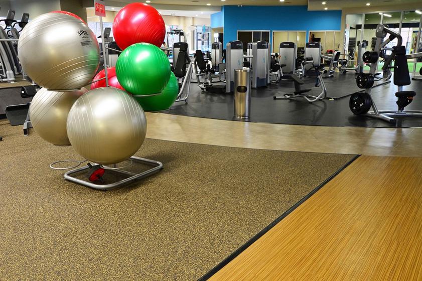 Vive Health & Fitness – Kingston, PA